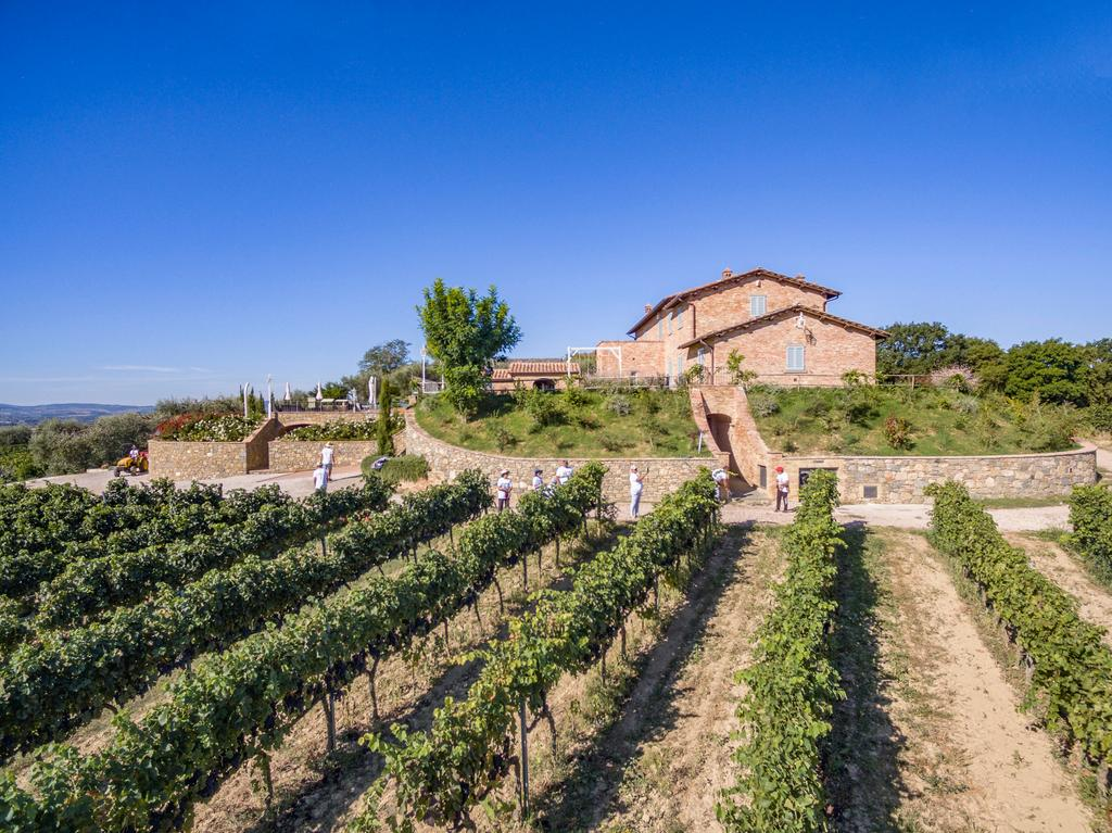 Contacts of farm Cantina Canaio | Syrah Cortona, Tuscany